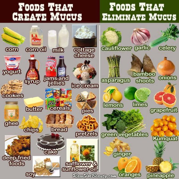 good foods and bad foods