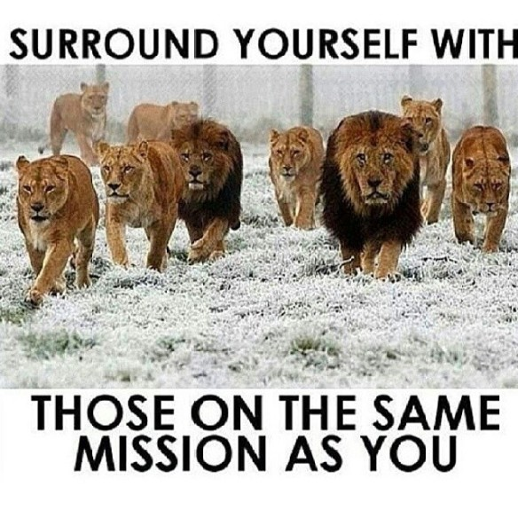 surround yourself1